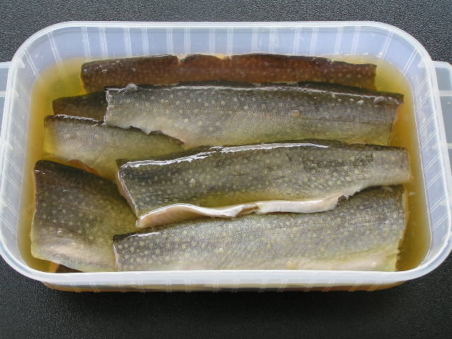Trout in Brown Sugar Fish Cure Brine