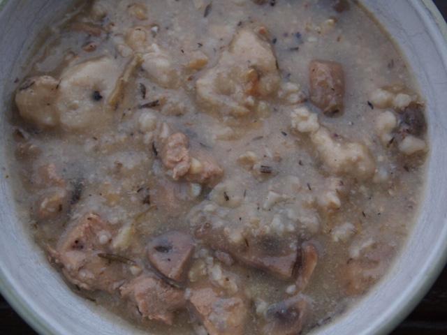 Wild Turkey Soup with Parmesan Dumplings